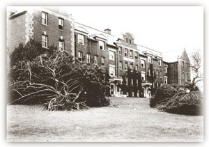 Hurricane damage near Gulley Hall