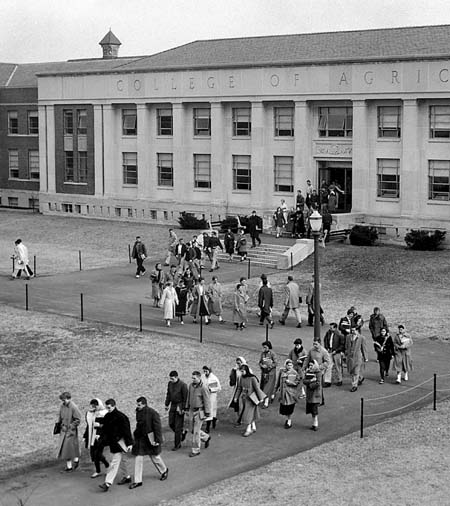 Image: College of Agriculture Building in 1953.